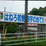 広島東洋カープ由宇練習場を訪ねてみました。