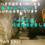今回は前回に引き続き、山口県岩国市美川町にある「地底王国 美川ムーバレー」の記事になります。今回はついに玖珂鉱山跡地テーマパークの「坑道探険」にチャレンジしましたハハハ!ぜひ読んでみて下さい。