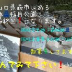 今回は、山口県萩市にある「萩城跡 指月公園」を訪ねた日の記事!第3弾(最終回)になります。「萩城跡 指月公園」の入場チケットを持っていると入れるもう1ヶ所の場所、国指定重要文化財「旧厚狭毛利家萩屋敷長屋」も記事にしています!ぜひ読んでみて下さい。