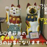 今回は前回同様、山口県萩市に猫寺として有名な「雲林寺」を訪ねた日の記事になります!ついに本堂の中へ入って行きますよ。お薦めのみどころもたくさん紹介しています。ぜひ読んでみて下さい!
